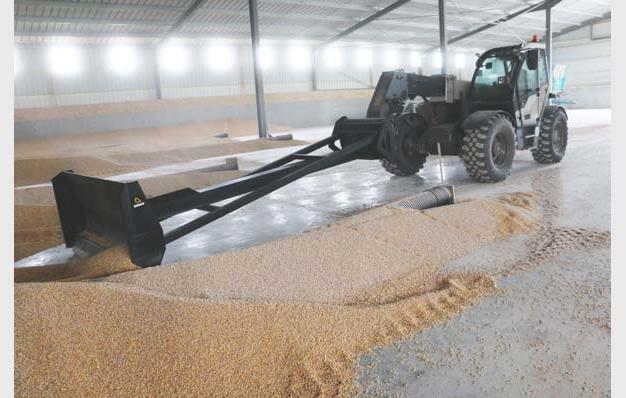 Lame bull pour remonter les tas de maïs, blé, orge Riman profil