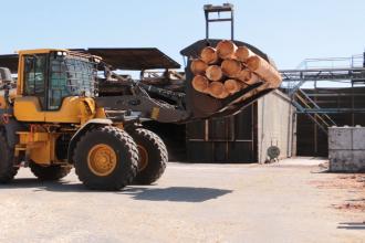 Chargeuse avec pince bois Riman manutention de troncs et grumes au sein du Groupe Thébault